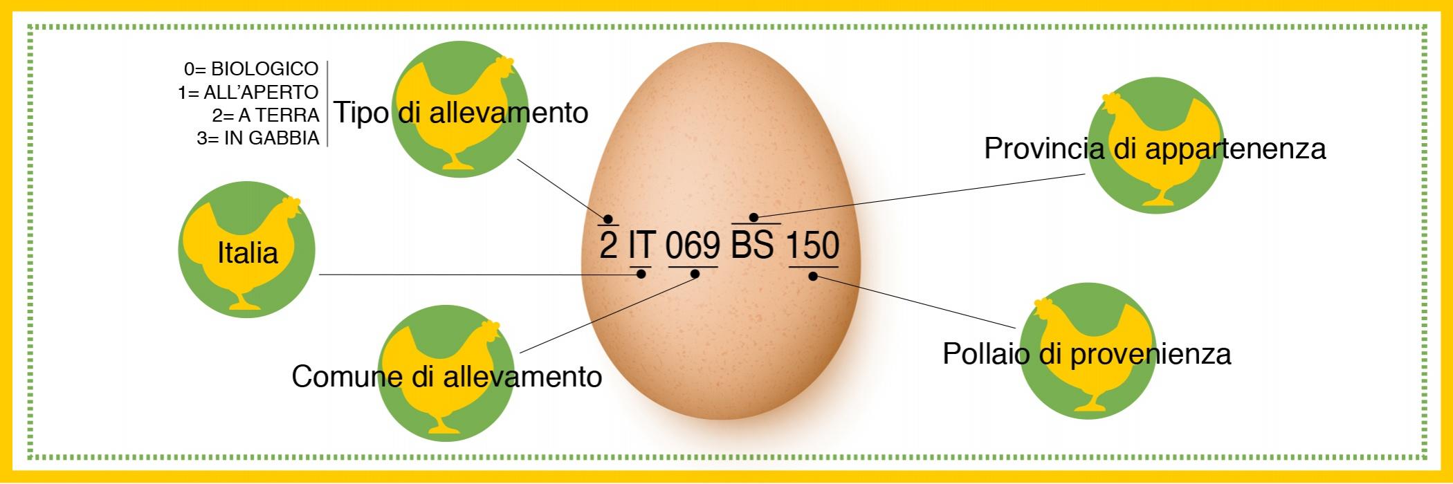 tracciabilità uova