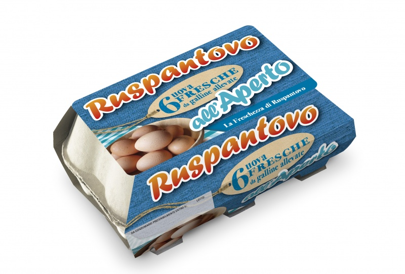 6 uova fresche